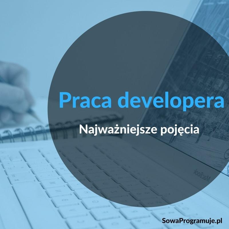 praca developera